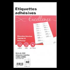ETIQUETTES ADHESIVES Boite de 4000 52.5x29.7 mm